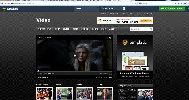 WordPress Video Theme No.1- Video