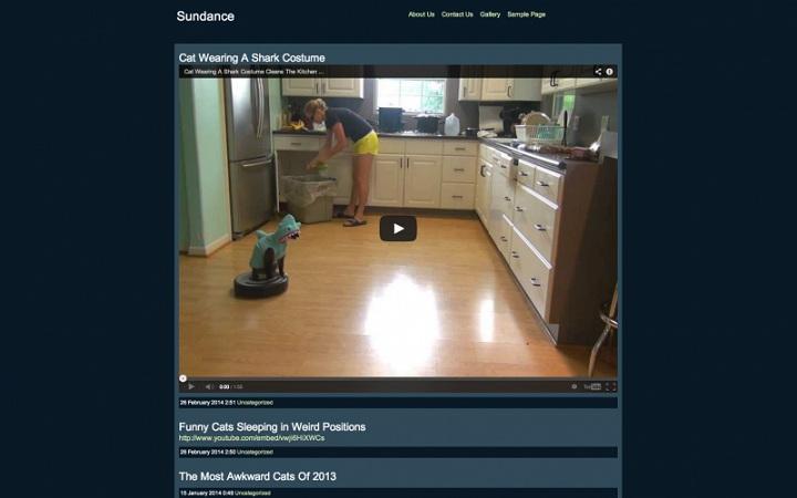WordPress Video Theme No.3-Webvideo