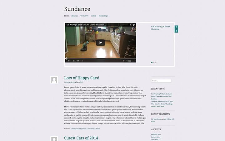 WordPress Video Theme No.4- Sundance