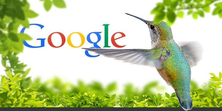 An SEO Guide to Google Hummingbird