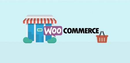 5 Best WooCommerce Search Plugins To Increase User Experience In 2017