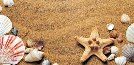 Tech-Free Tourism: The Rise Of Digital Detox Holidays