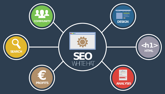 This is Why You Must Invest in SEO Optimization for Your Website