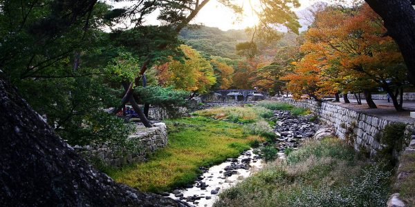The Top Things to Do in South Korea